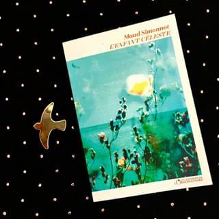 RENTREE LITTERAIRE - L'Enfant Cleste, de Maud Simonnot, en librairie le 19 aot.   Sensible,...