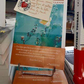 LE SAMEDI C'EST LIBRAIRIE    Un premier roman magnifique et potique port par la belle plume...